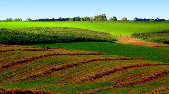 how to get a farm appraised